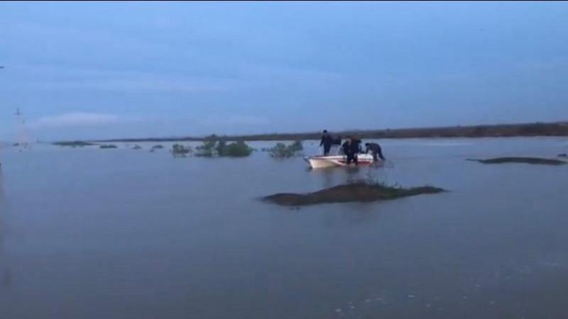 Өзбекстандағы апат салдарынан Қазақстандағы екі ауыл су астында қалды